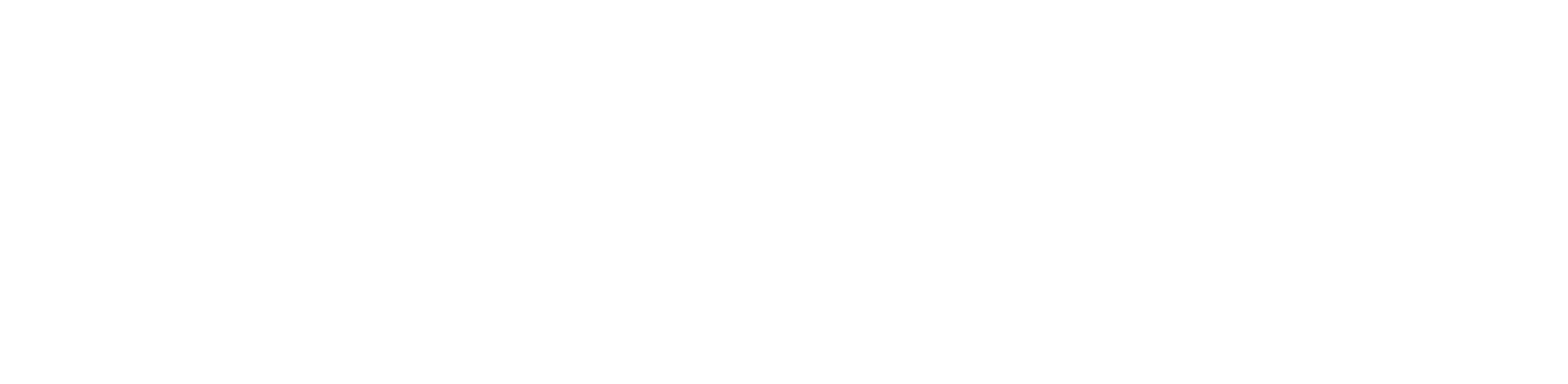 FlipBelt DE